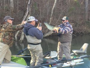 Very happy angler with his first ever musky. Cuaght on the James River, Virginia Musky.