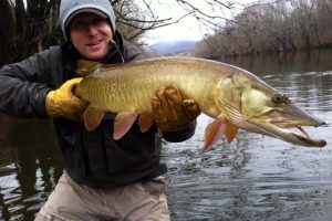 Scott O, with a cold winter day musky caught on the James river. James river, Virginia musky.