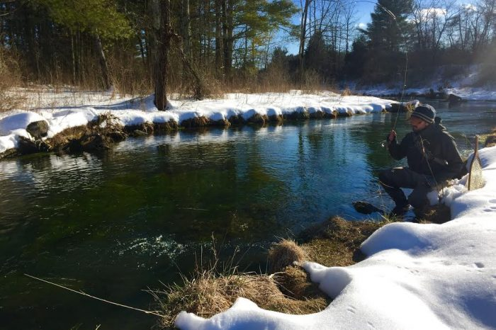 Guided trout trips